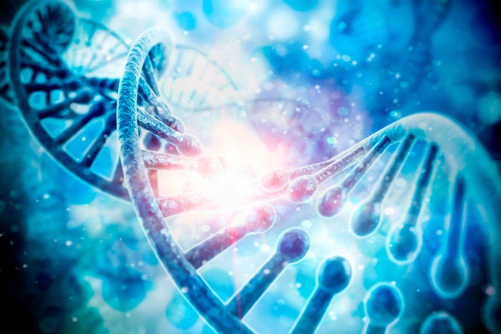 DNA de Abraão